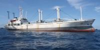 Seven Seas - delivery in Maldives1